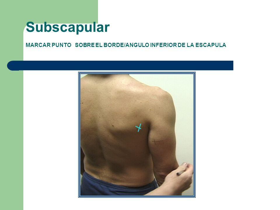 Subscapular MARCAR PUNTO SOBRE EL BORDE/ANGULO INFERIOR DE LA ESCAPULA