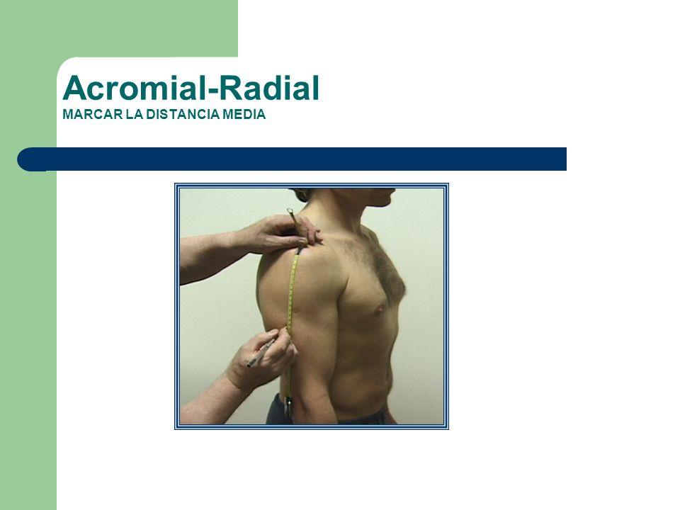 Acromial-Radial MARCAR LA DISTANCIA MEDIA
