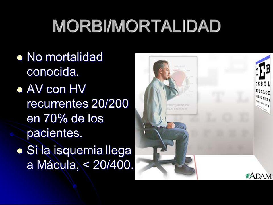 MORBI/MORTALIDAD No mortalidad conocida.