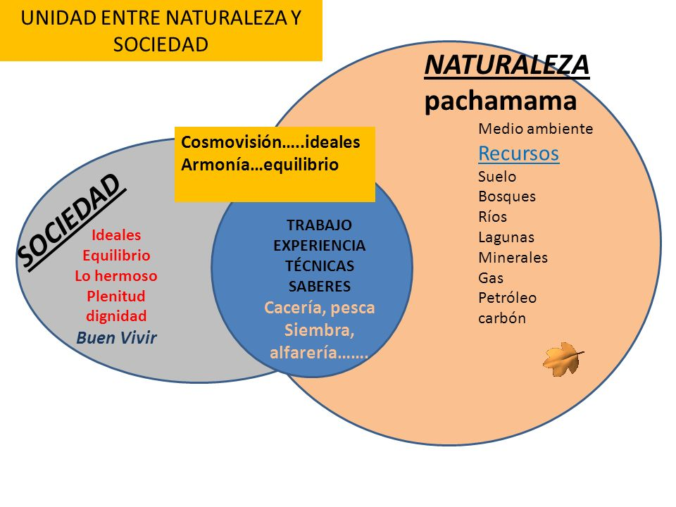 UNIDAD ENTRE NATURALEZA Y SOCIEDAD