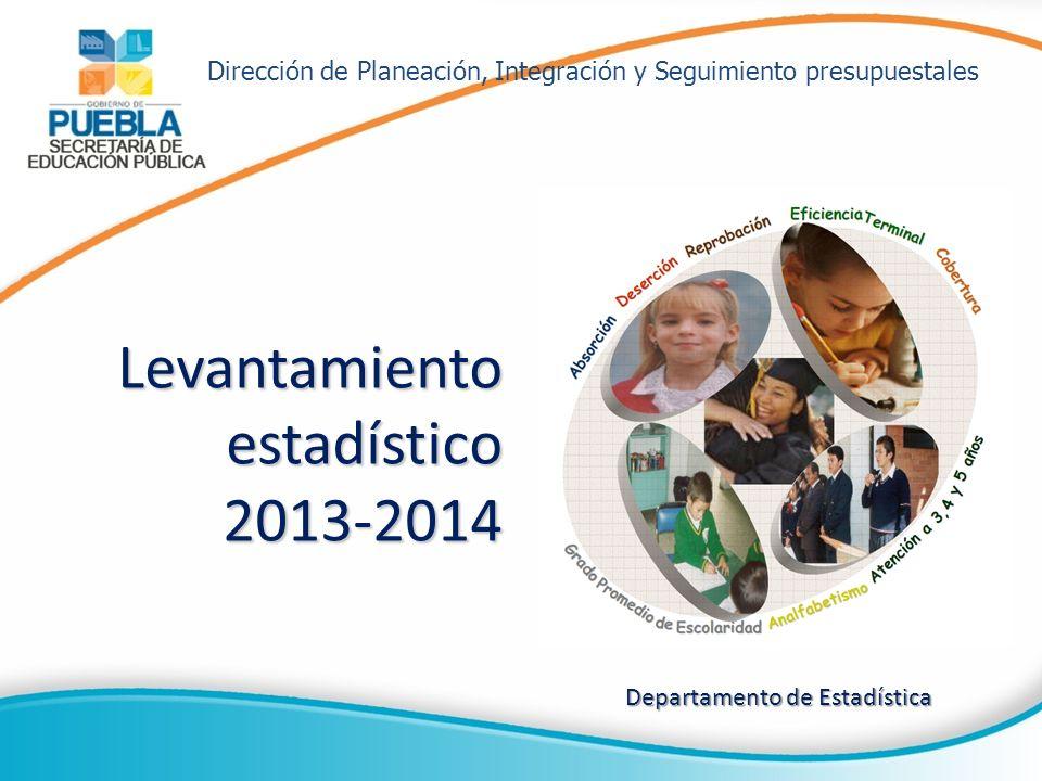 Levantamiento estadístico 2013-2014
