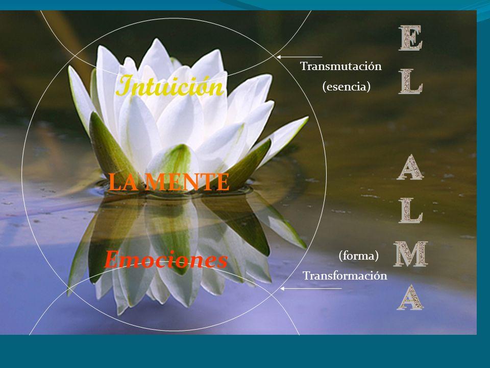 Intuición EL ALMA LA MENTE Emociones Transmutación (esencia) (forma)