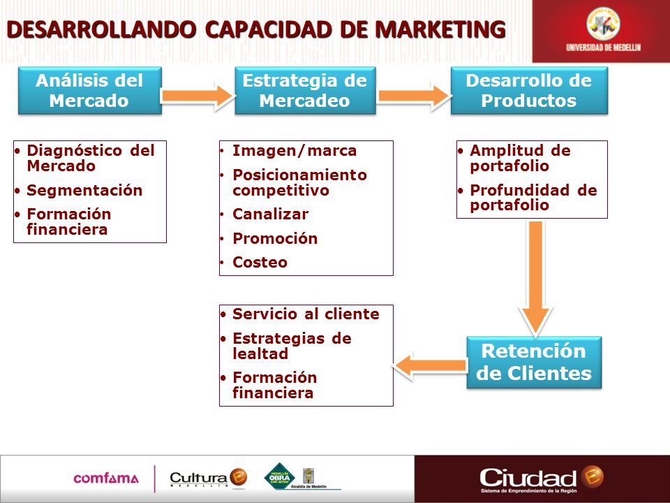 DESARROLLANDO CAPACIDAD DE MARKETING
