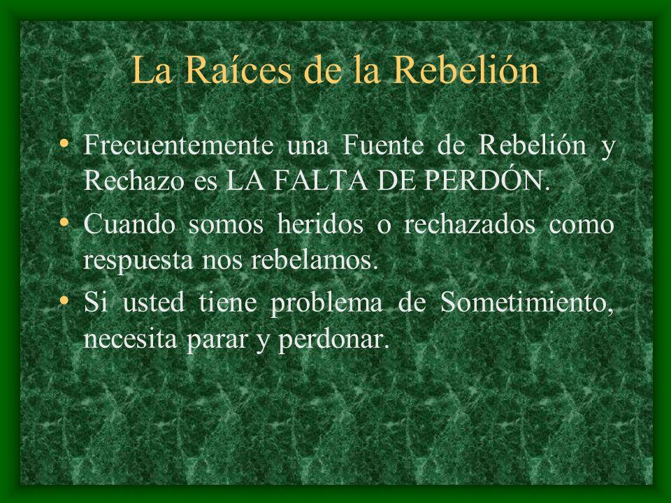 La Raíces de la Rebelión