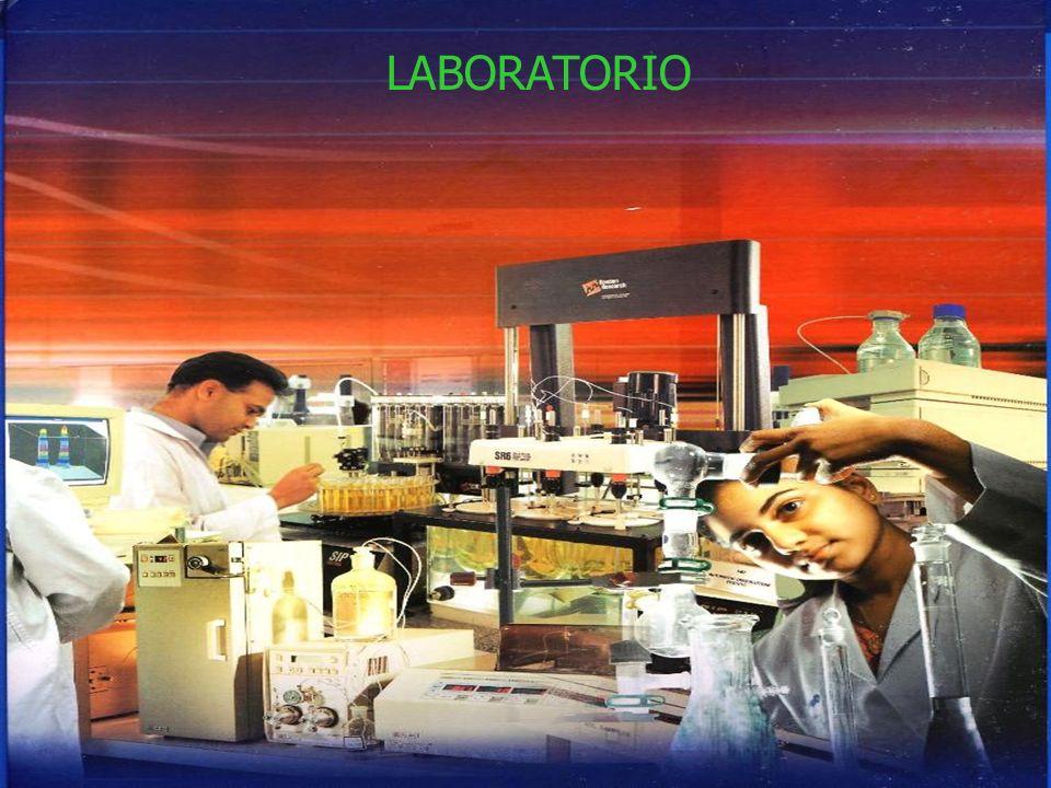 LABORATORIO LABORATORIO