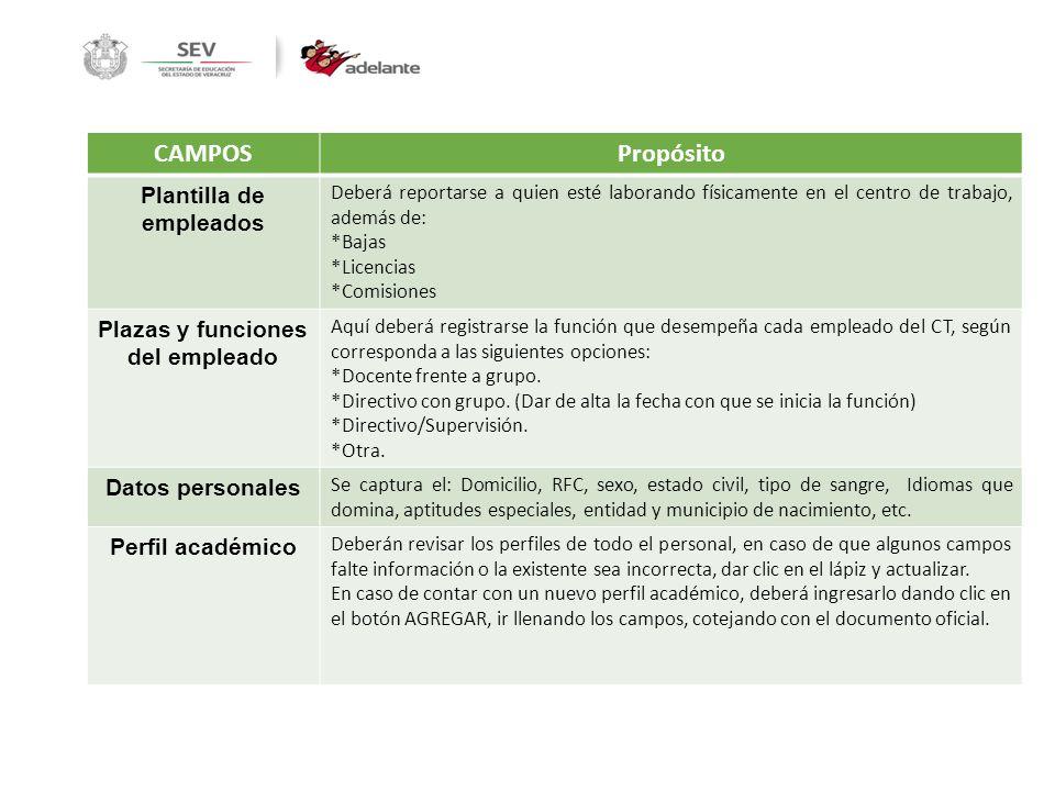 Plantilla de empleados Plazas y funciones del empleado