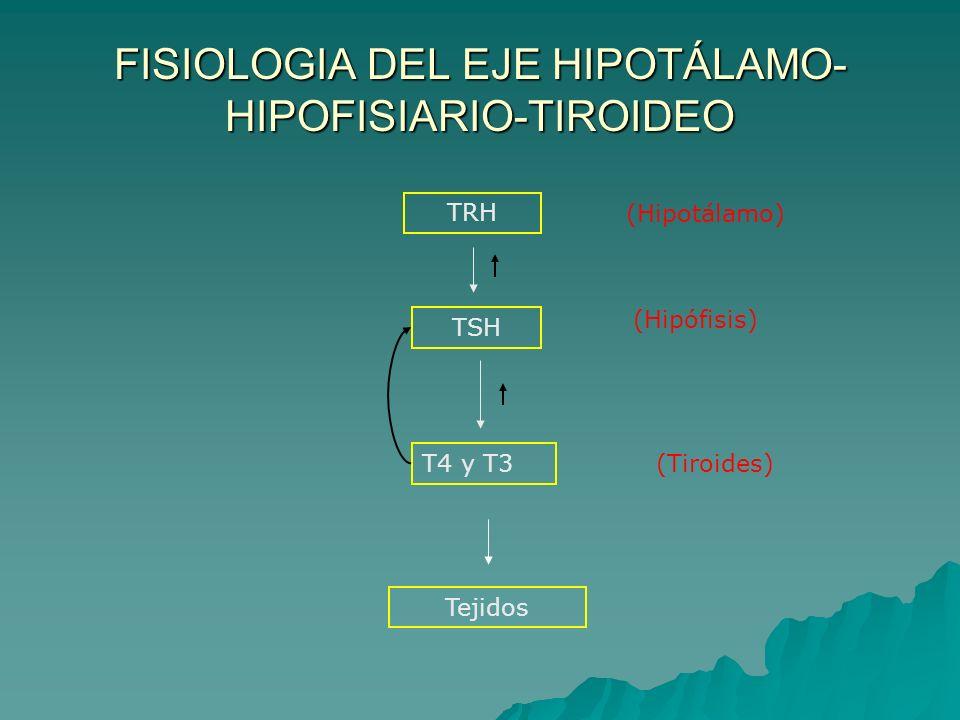 FISIOLOGIA DEL EJE HIPOTÁLAMO-HIPOFISIARIO-TIROIDEO