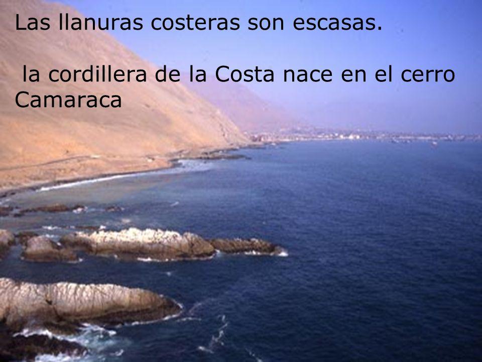 Las llanuras costeras son escasas