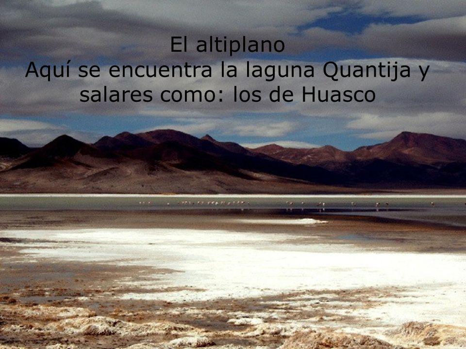 El altiplano Aquí se encuentra la laguna Quantija y salares como: los de Huasco