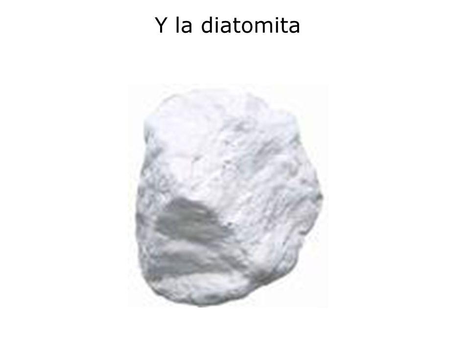 Y la diatomita