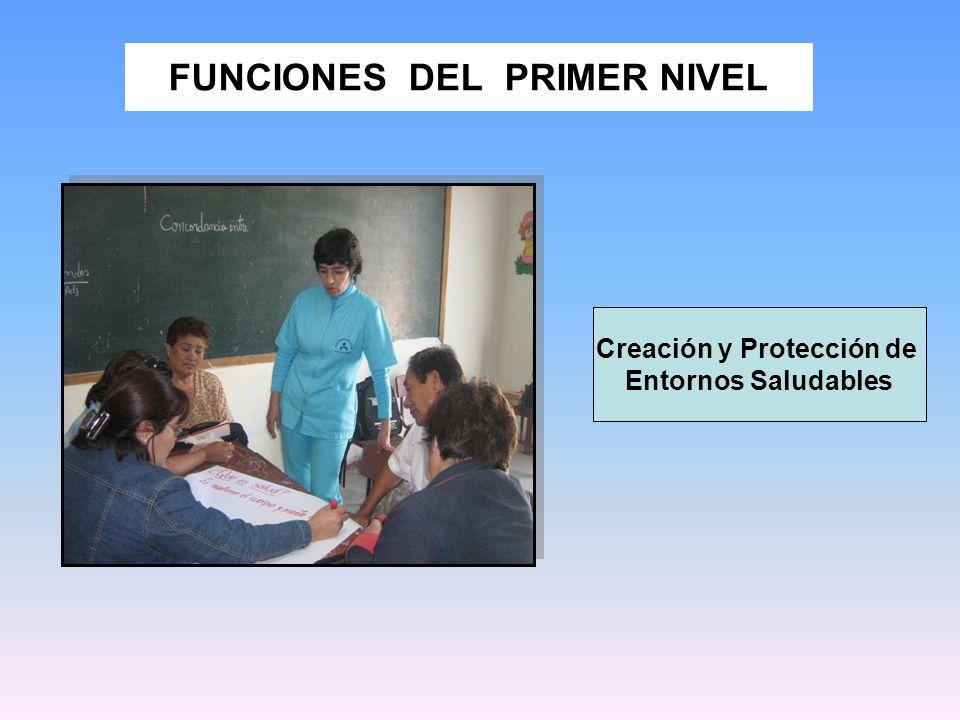FUNCIONES DEL PRIMER NIVEL