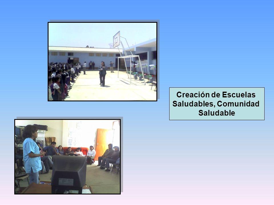 Creación de Escuelas Saludables, Comunidad Saludable
