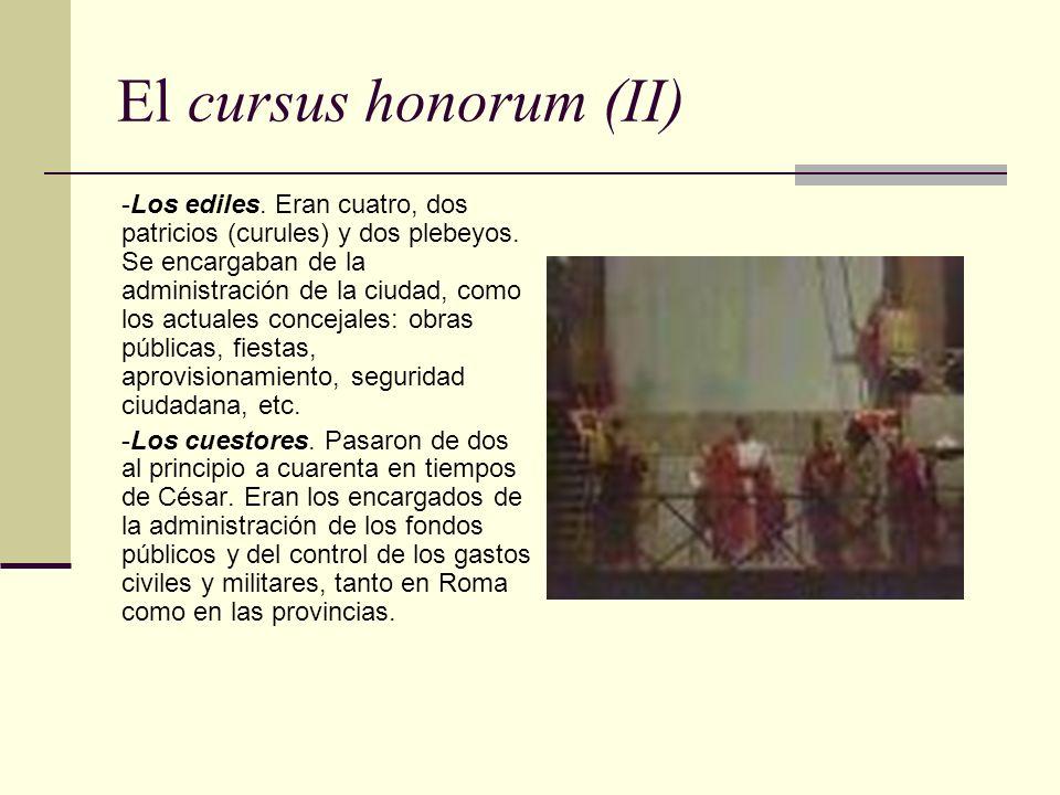 El cursus honorum (II)