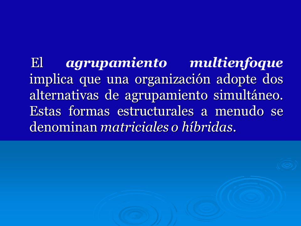 El agrupamiento multienfoque implica que una organización adopte dos alternativas de agrupamiento simultáneo.
