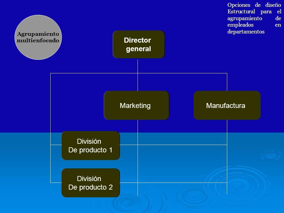 Director general Marketing Manufactura División De producto 1 División