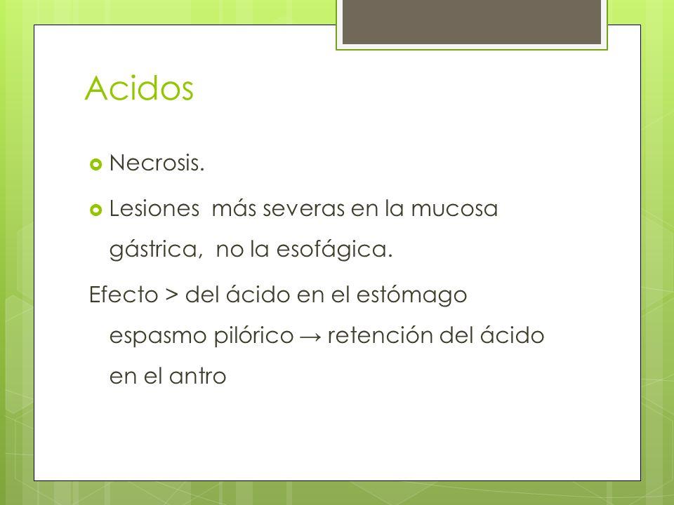 Acidos Necrosis. Lesiones más severas en la mucosa gástrica, no la esofágica.