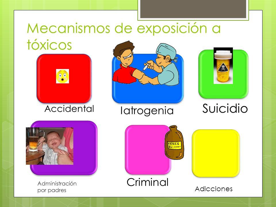Mecanismos de exposición a tóxicos