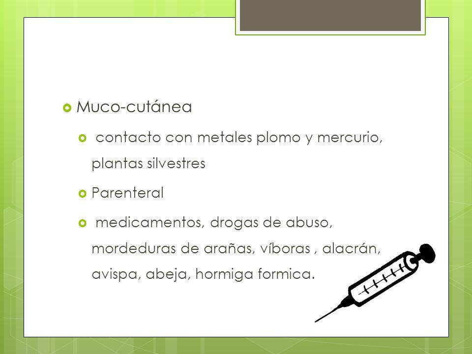 Muco-cutánea contacto con metales plomo y mercurio, plantas silvestres