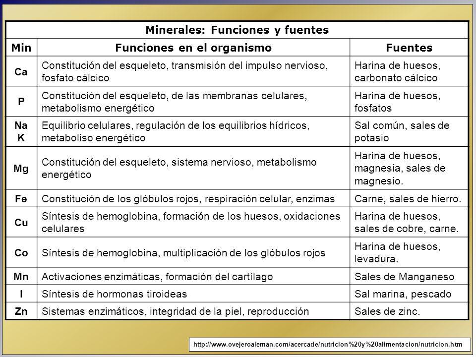 Minerales: Funciones y fuentes Funciones en el organismo