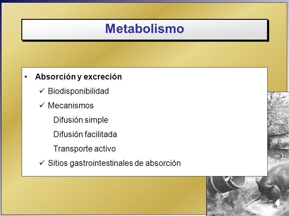 Metabolismo Absorción y excreción Biodisponibilidad Mecanismos