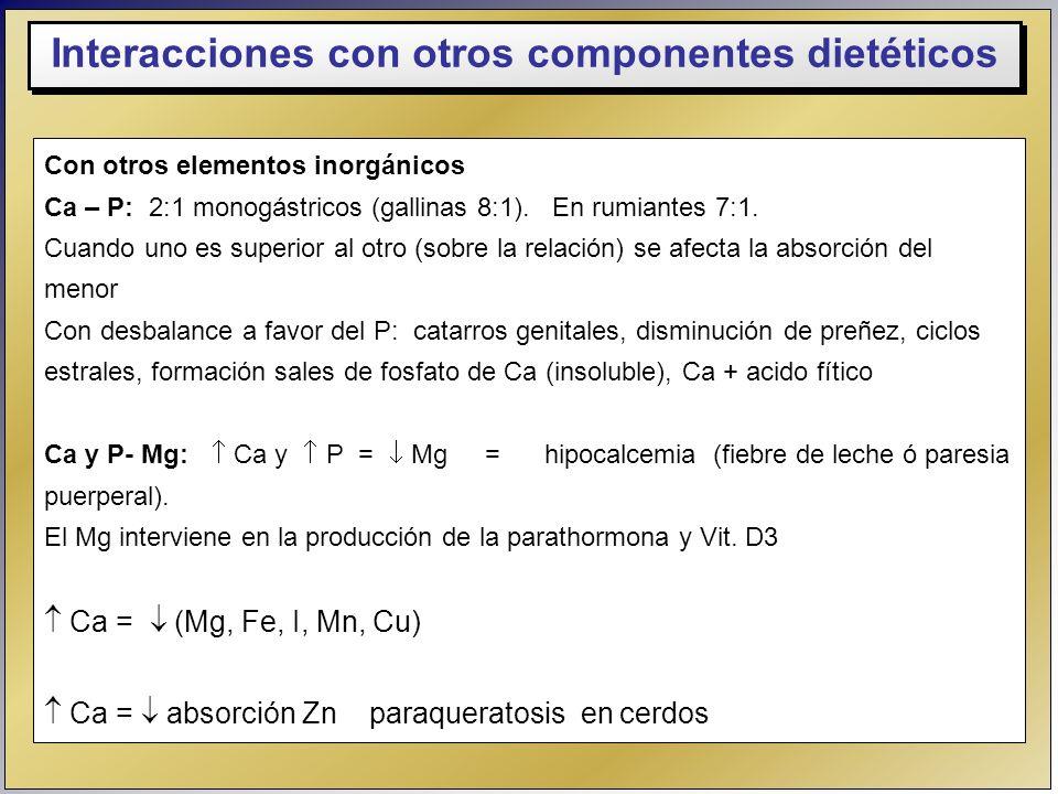Interacciones con otros componentes dietéticos