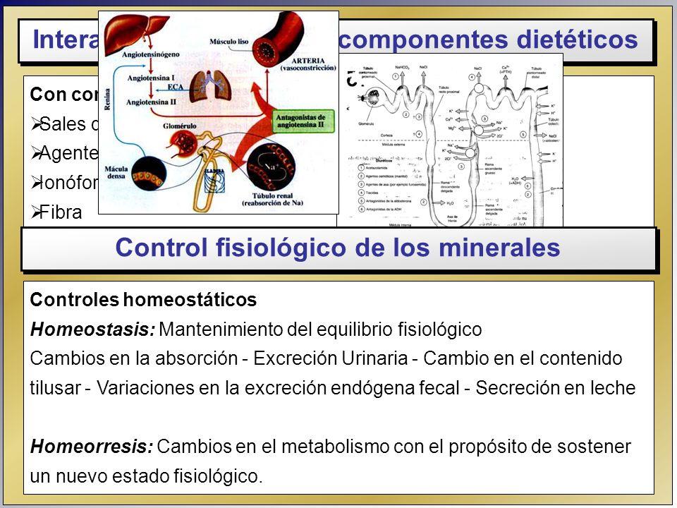 Control fisiológico de los minerales