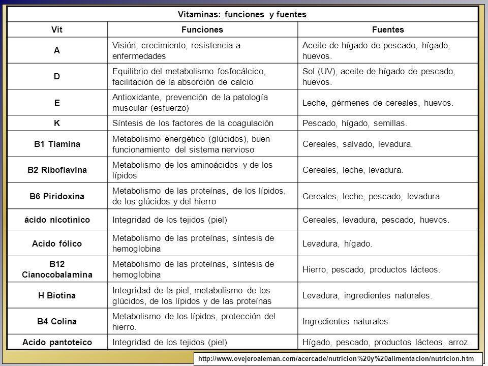 Vitaminas: funciones y fuentes