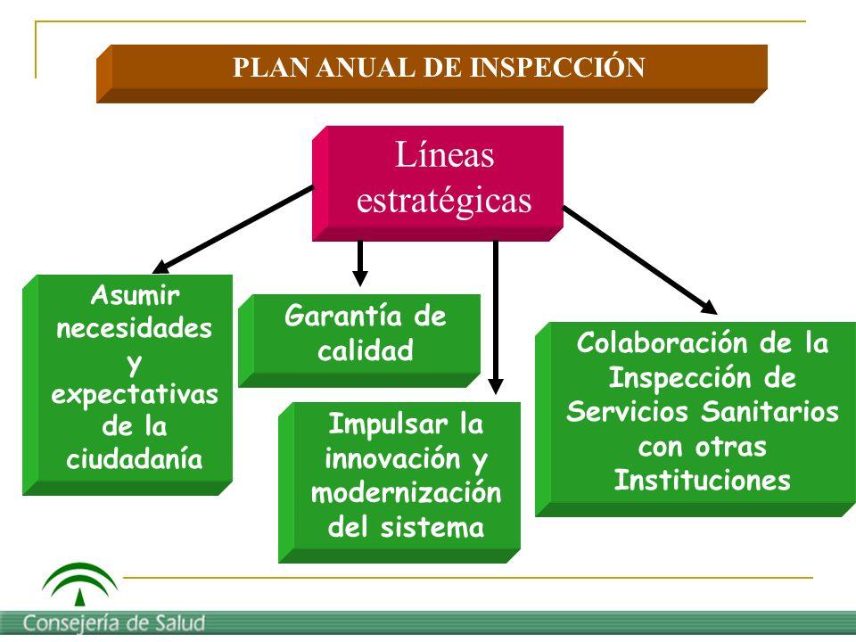 Líneas estratégicas PLAN ANUAL DE INSPECCIÓN Garantía de calidad