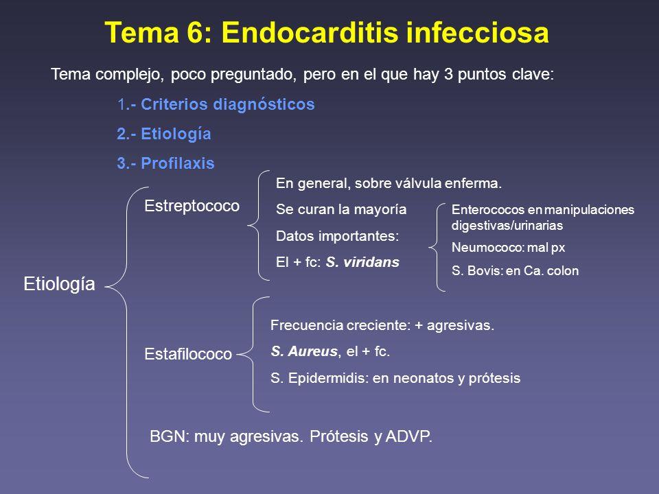 Tema 6: Endocarditis infecciosa