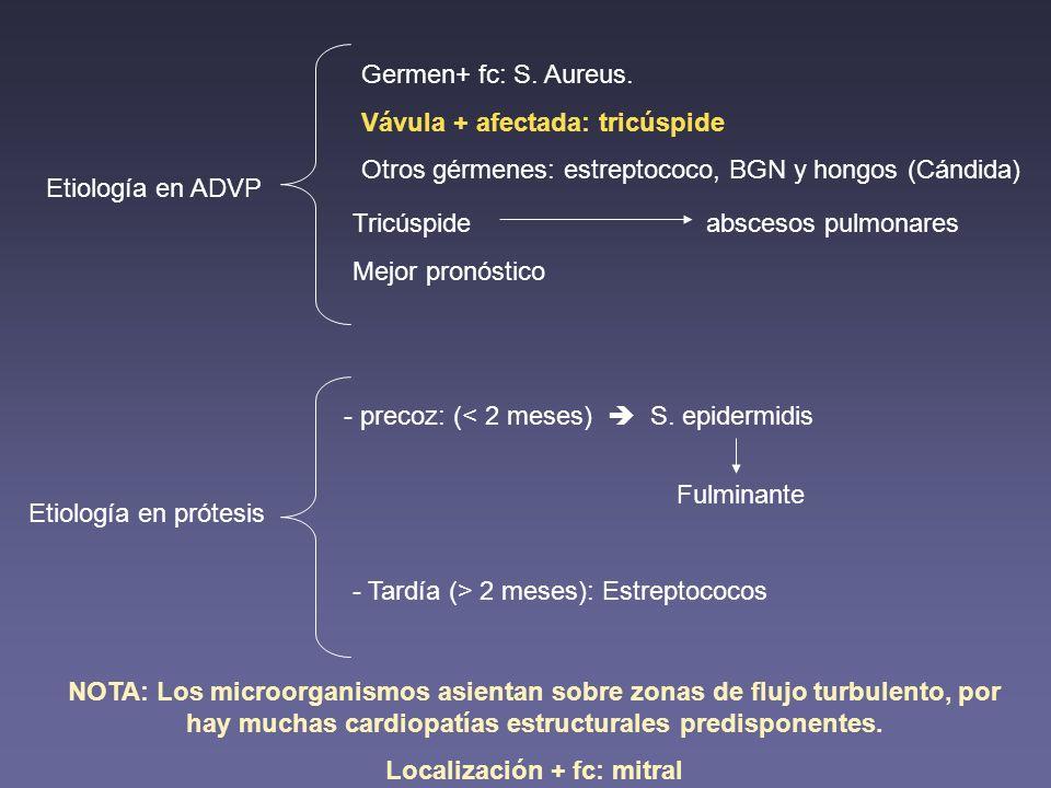 Localización + fc: mitral