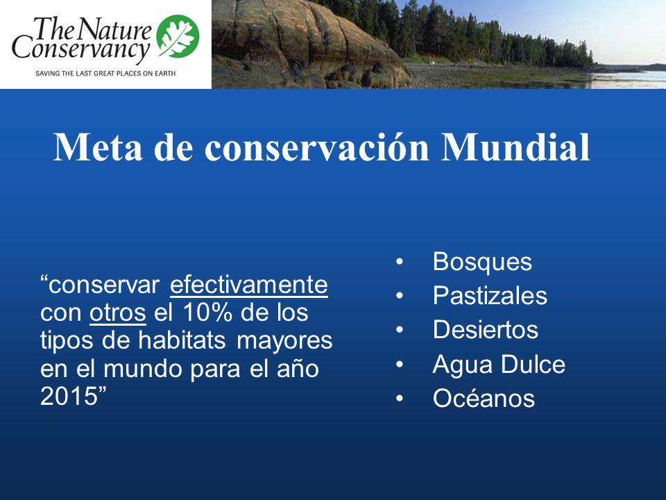 Meta de conservación Mundial