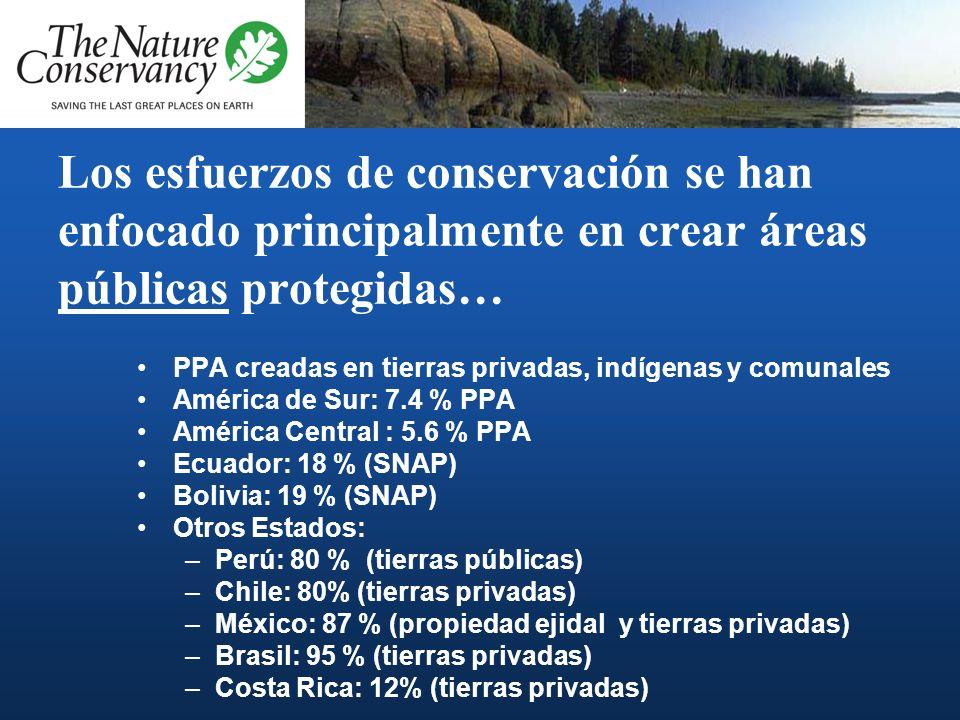 Los esfuerzos de conservación se han enfocado principalmente en crear áreas públicas protegidas…