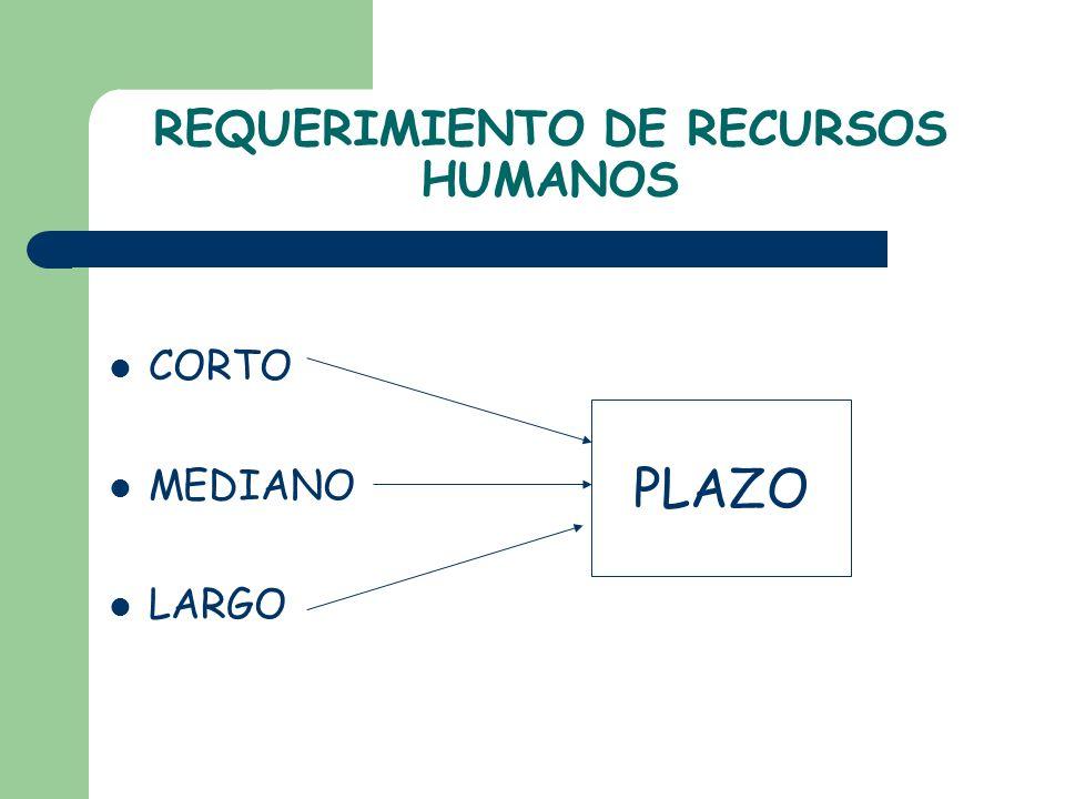 REQUERIMIENTO DE RECURSOS HUMANOS