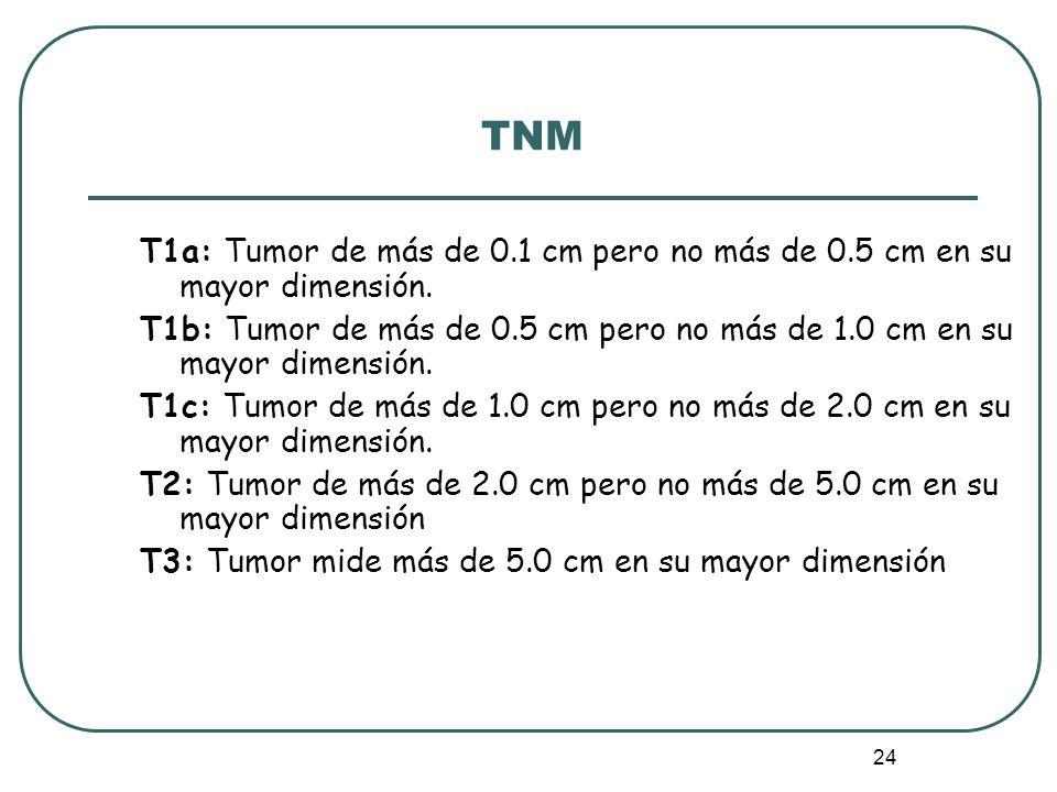 TNM T1a: Tumor de más de 0.1 cm pero no más de 0.5 cm en su mayor dimensión.