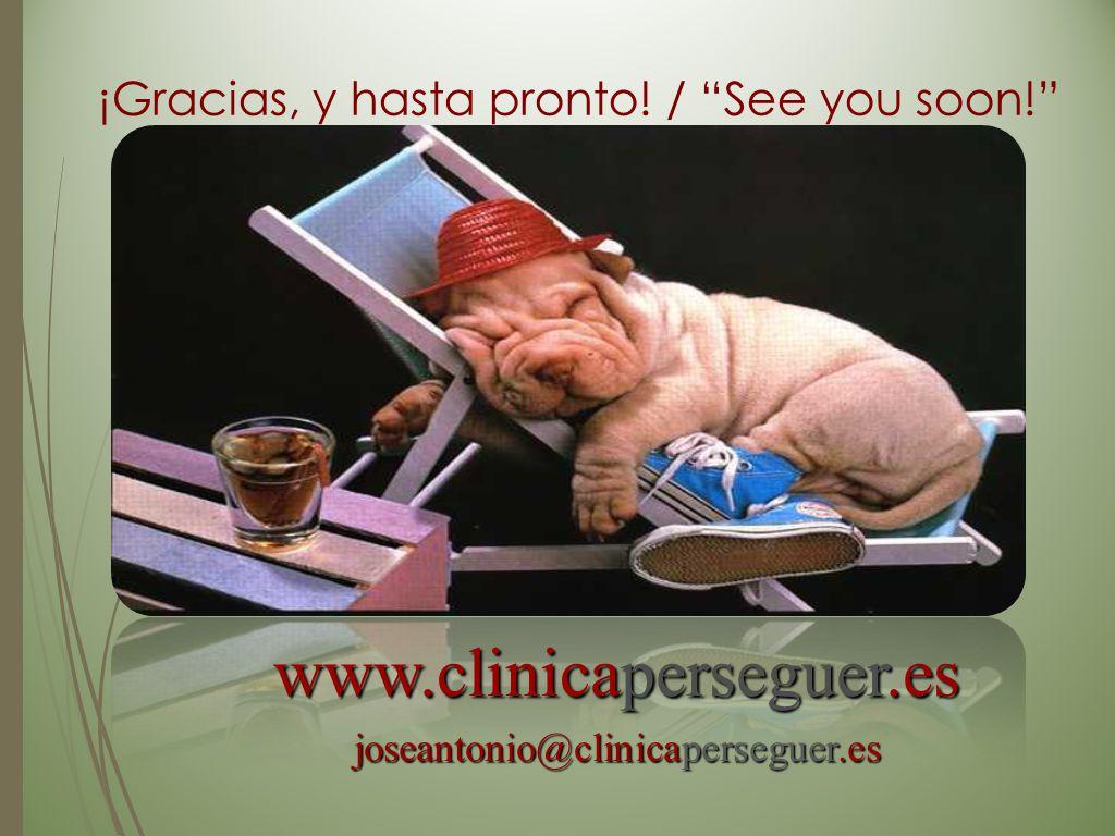 ¡Gracias, y hasta pronto! / See you soon!
