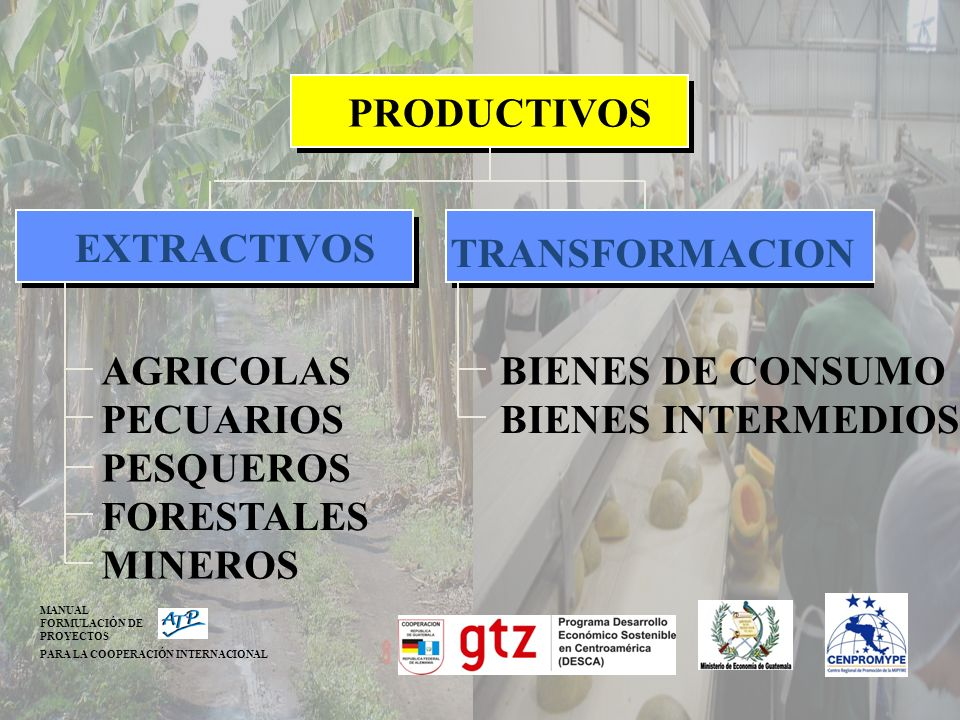 AGRICOLAS PECUARIOS PESQUEROS FORESTALES MINEROS EXTRACTIVOS