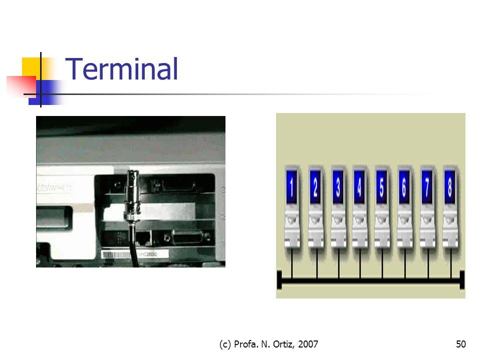 Terminal (c) Profa. N. Ortiz, 2007 (c) Profa. N. Ortiz, 2007