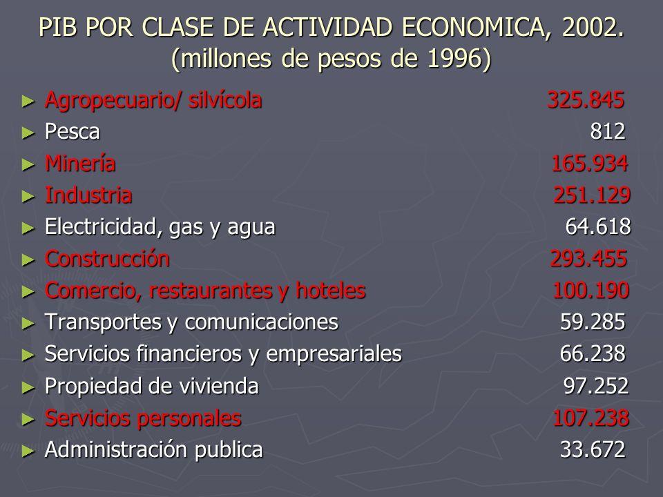 PIB POR CLASE DE ACTIVIDAD ECONOMICA, 2002. (millones de pesos de 1996)