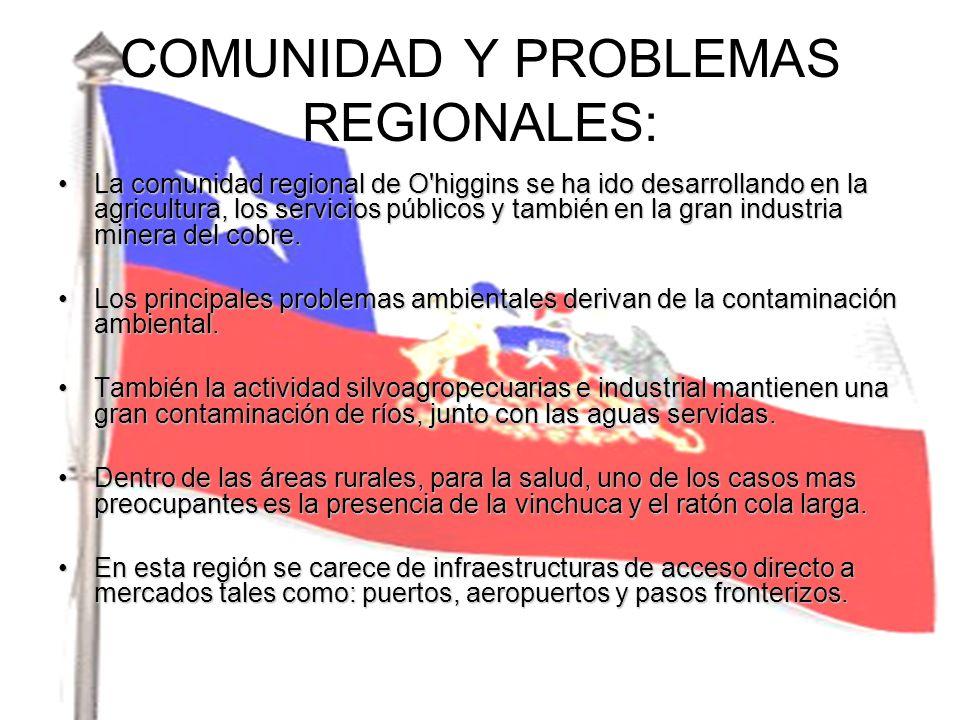 COMUNIDAD Y PROBLEMAS REGIONALES: