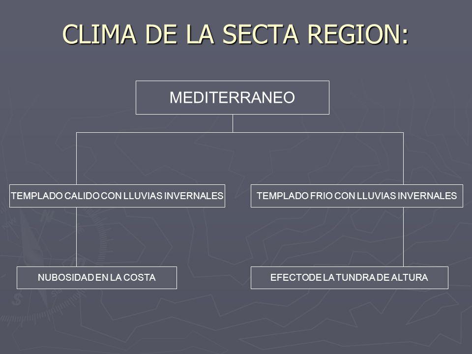CLIMA DE LA SECTA REGION: