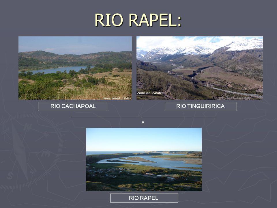 RIO RAPEL: RIO CACHAPOAL RIO TINGUIRIRICA RIO RAPEL