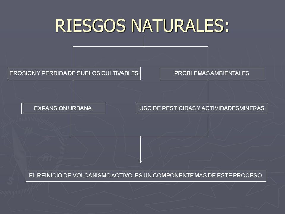 RIESGOS NATURALES: EROSION Y PERDIDA DE SUELOS CULTIVABLES