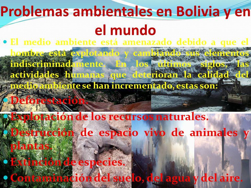 Problemas ambientales en Bolivia y en el mundo