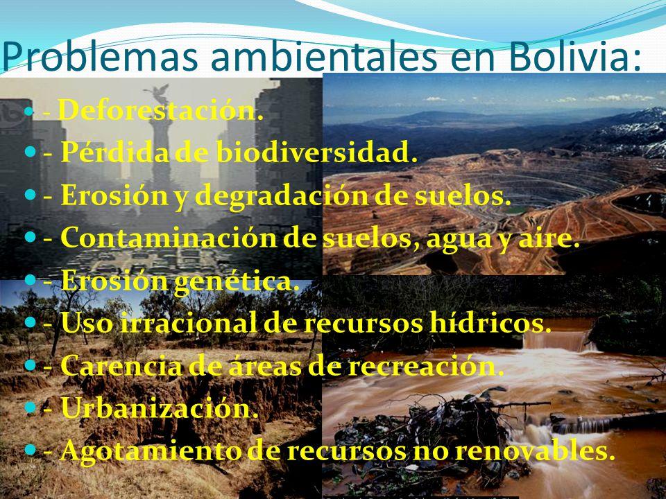 Problemas ambientales en Bolivia: