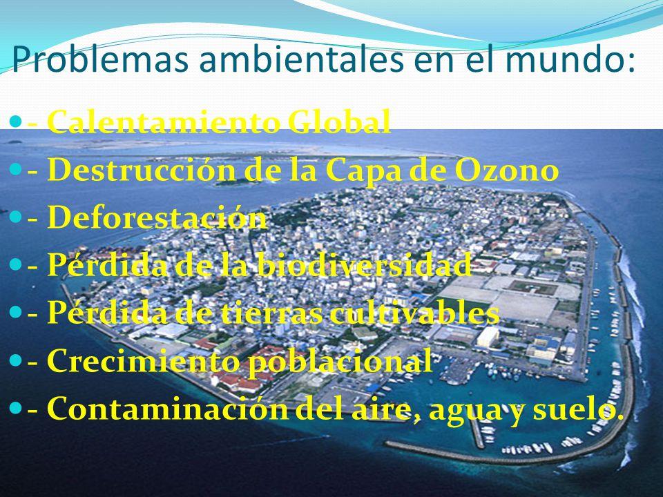 Problemas ambientales en el mundo: