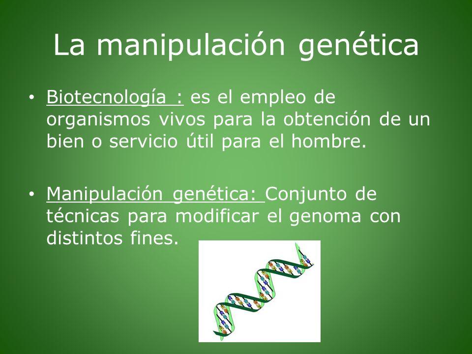 La manipulación genética