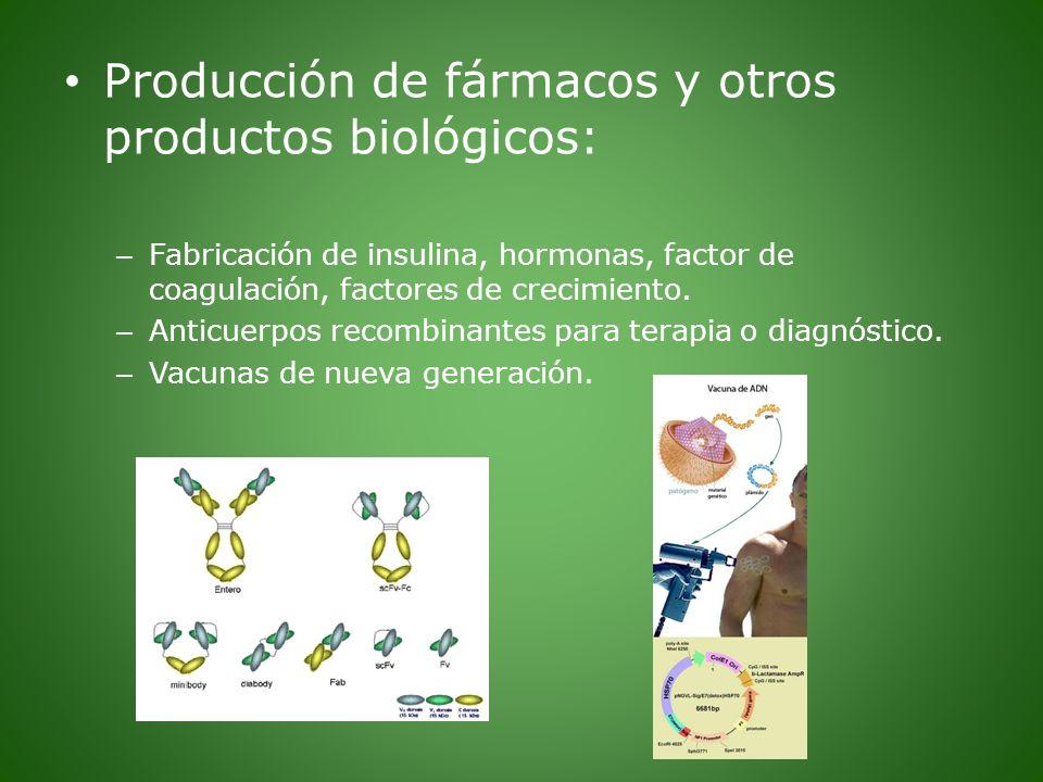 Producción de fármacos y otros productos biológicos: