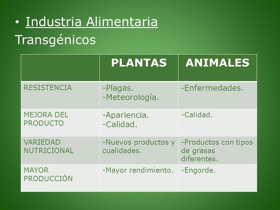 Industria Alimentaria Transgénicos