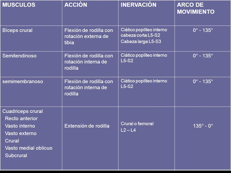 MUSCULOS ACCIÓN INERVACIÓN ARCO DE MOVIMIENTO Bíceps crural