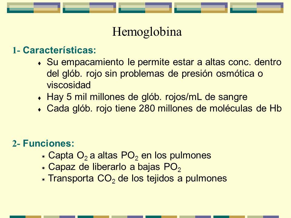 Hemoglobina 1- Características: